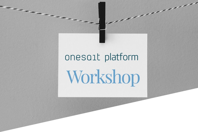 Workshop on the Platform. Part II: Data Entry
